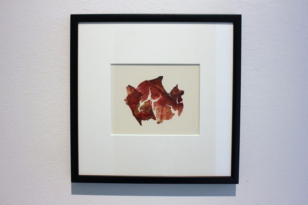 """18) Da """"Herbarium"""", 1974, C-print, cm. 18x22,5 vintage"""