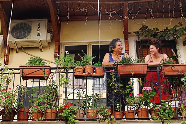 Giardinieri, 2014
